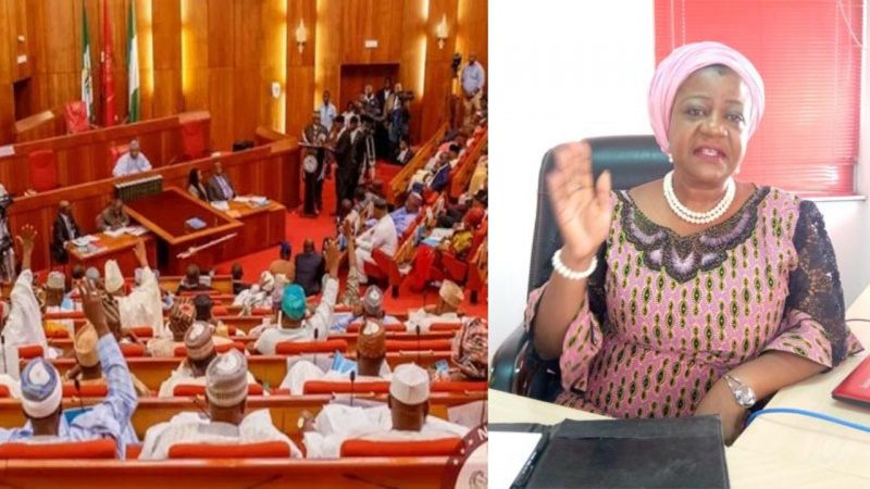 Why We Rejected Onochie As INEC Commissioner, By Senate