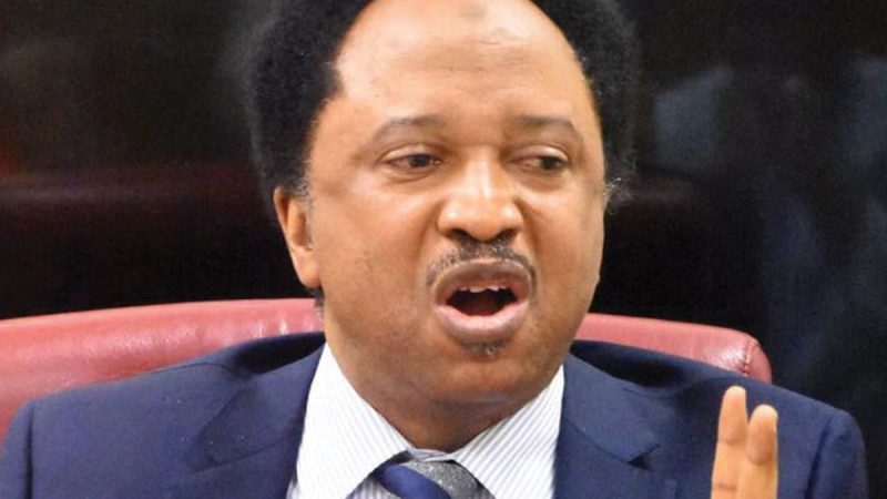 INEC: Your Denial Of APC Is Baseless, You Can't Be Commissioner – Shehu Sani To Lauretta Onochie
